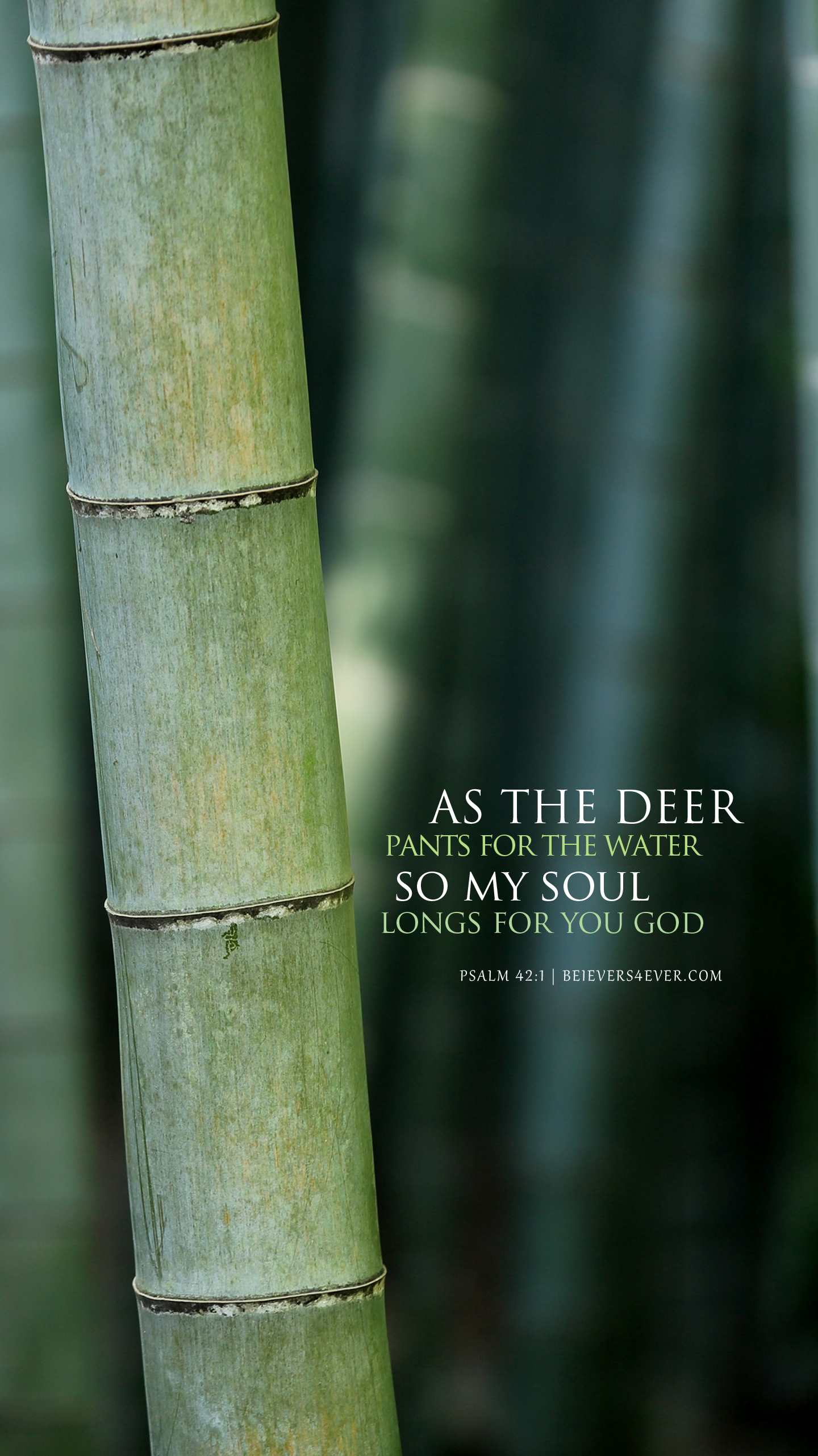 As the deer pants for the water so my soul longs for you God. Psalm 42:1 Free Christian lock screen wallpaper for your mobile device.