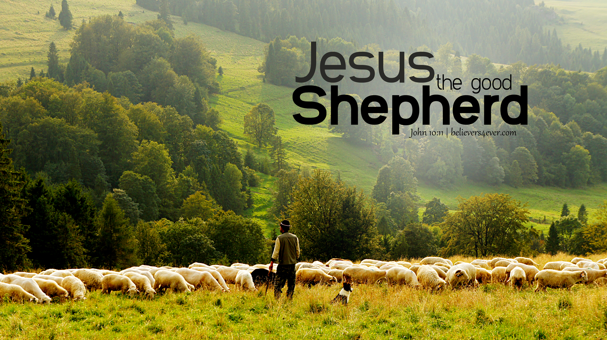 Jesus the good shepherd wallpaper, Christian stock images