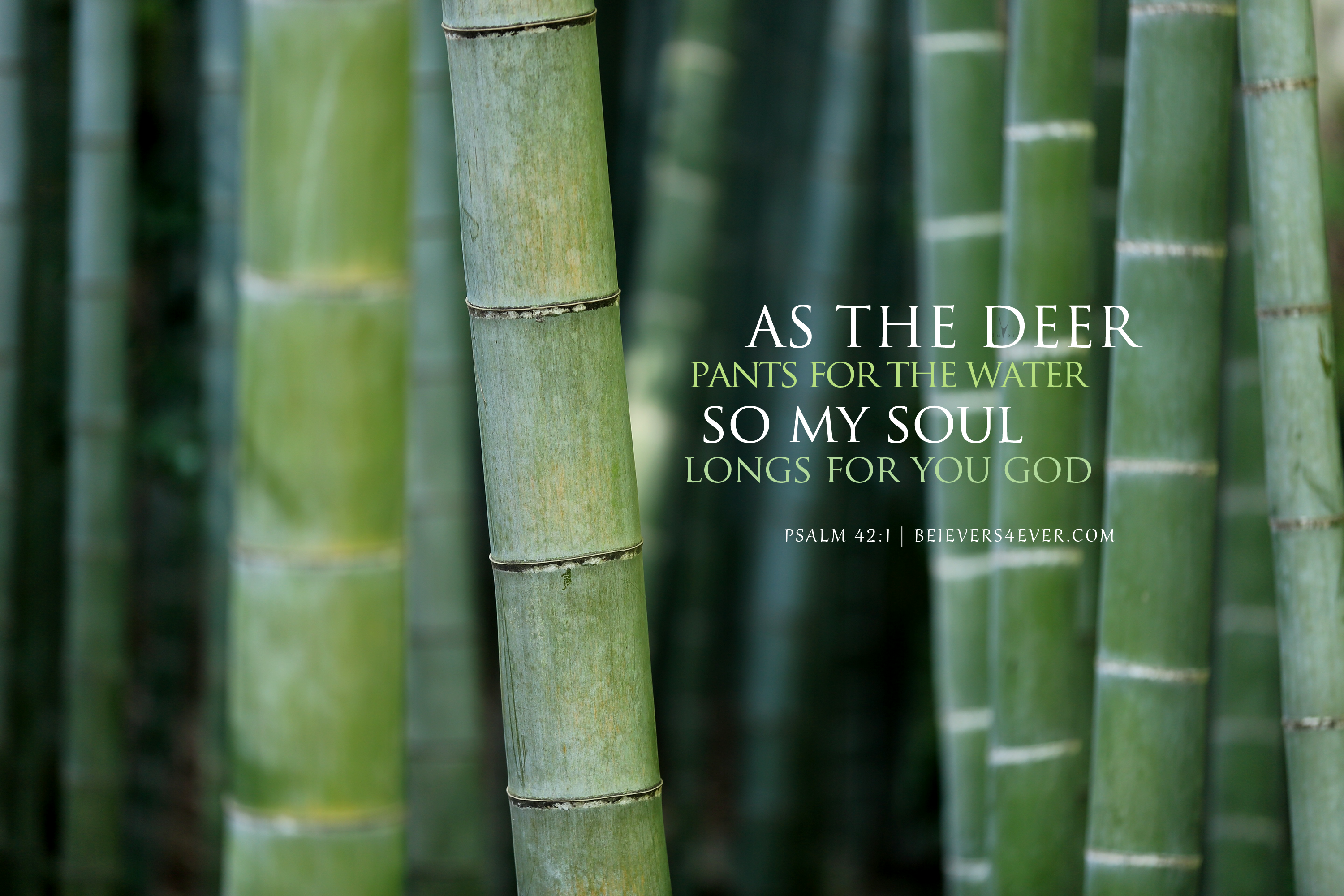 As the deer pants for the water so my soul longs for you God. Psalm 42:1Christian wallpaper featuring bible verse scripture. Free to download for personal & non-commercial Church use