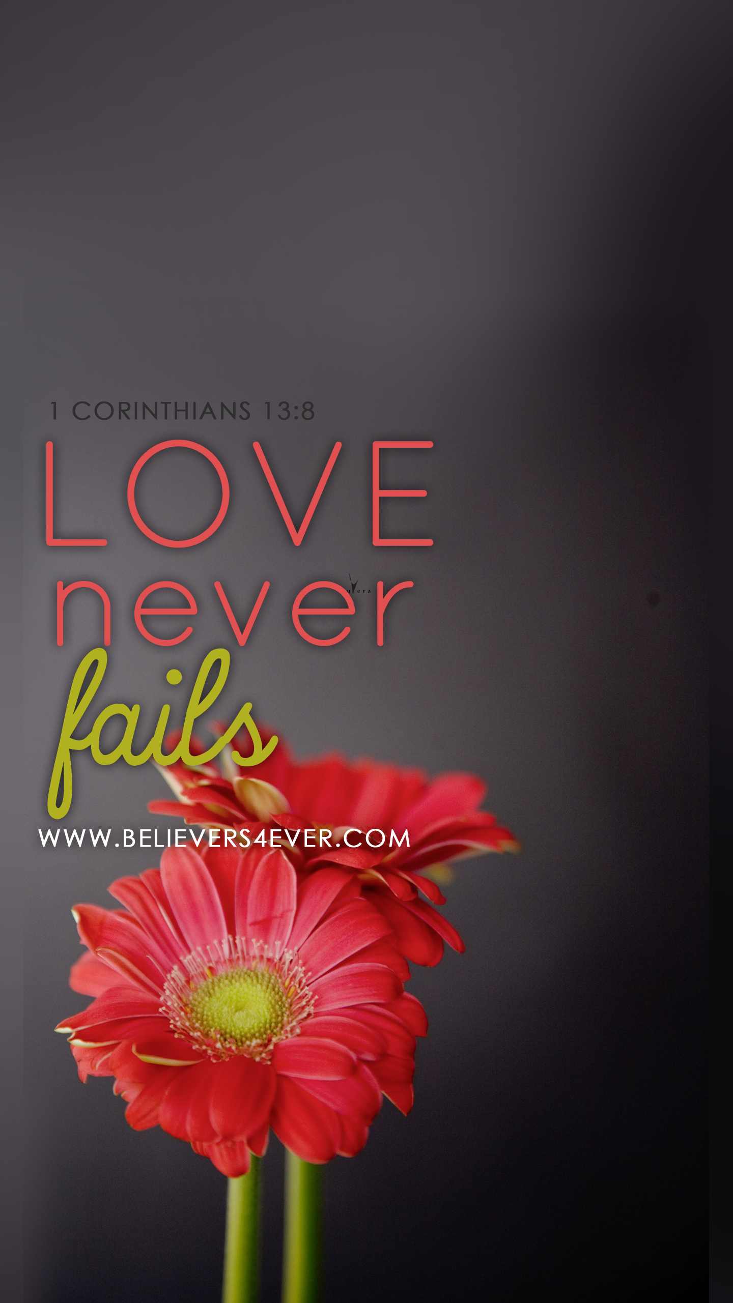 Love never fails 1 Corinthians 13:8.