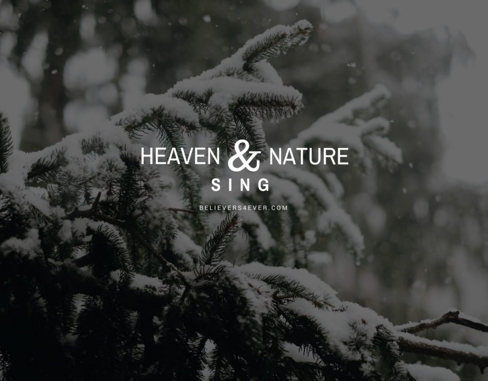 Heaven and nature sing Christmas wallpaper